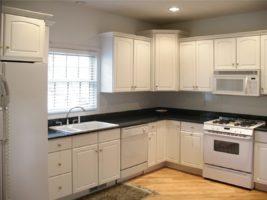 New Kitchen Cabinets Lutz FL