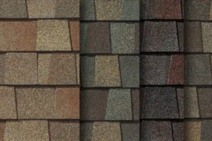Shingle Roofing Tampa FL