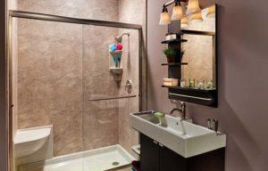 Shower Installation Dunedin FL