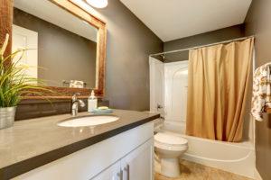Shower Remodel Temple Terrace FL